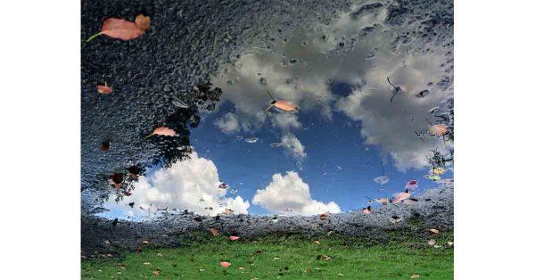 Where the Earth & Sky Meet