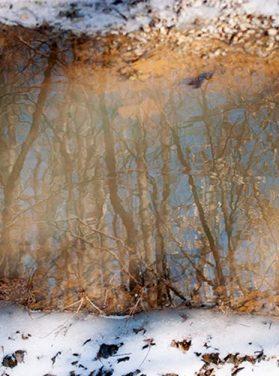 Snow & Mud Winter Sky