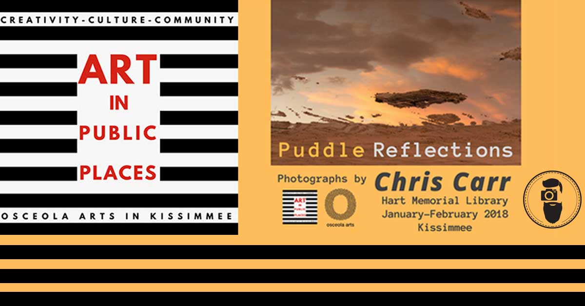 Art in Public Places Kissimmee – Puddle Reflections