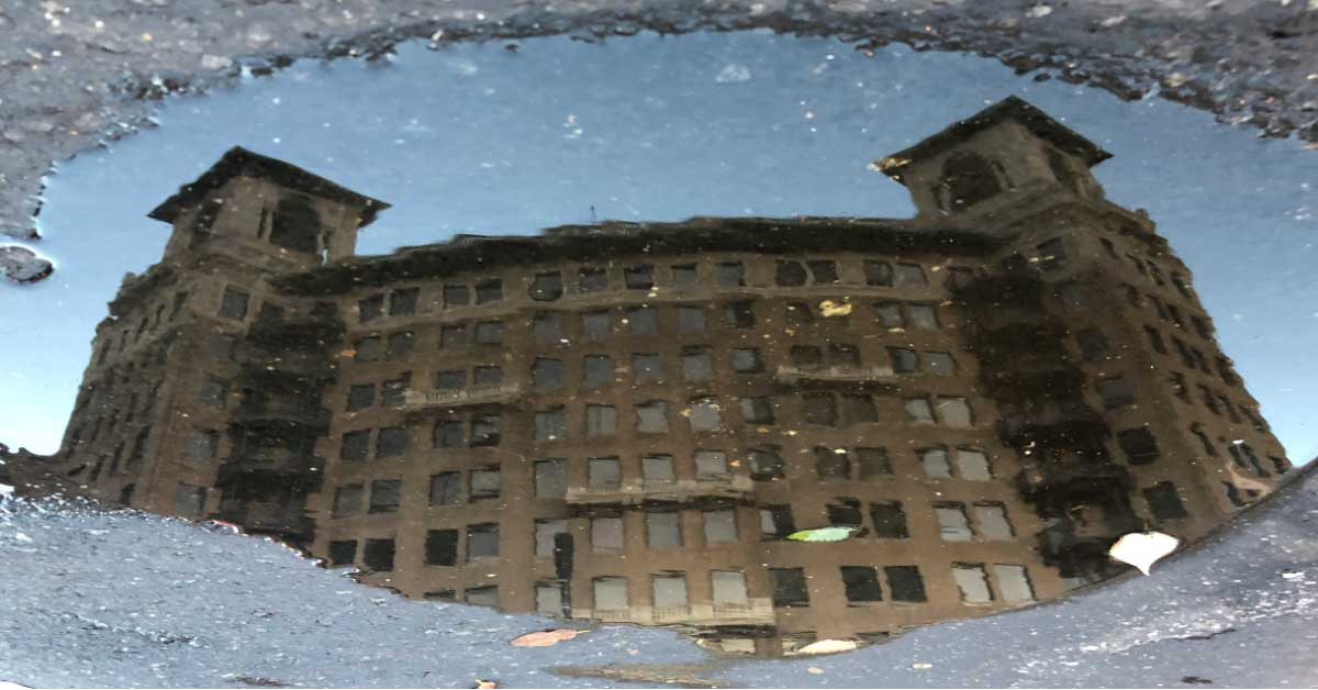 Living Around the Puddle