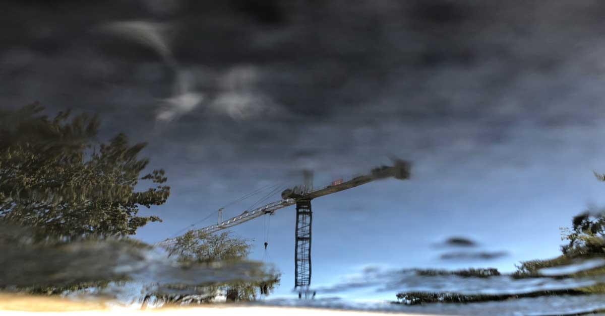 Florida Crane