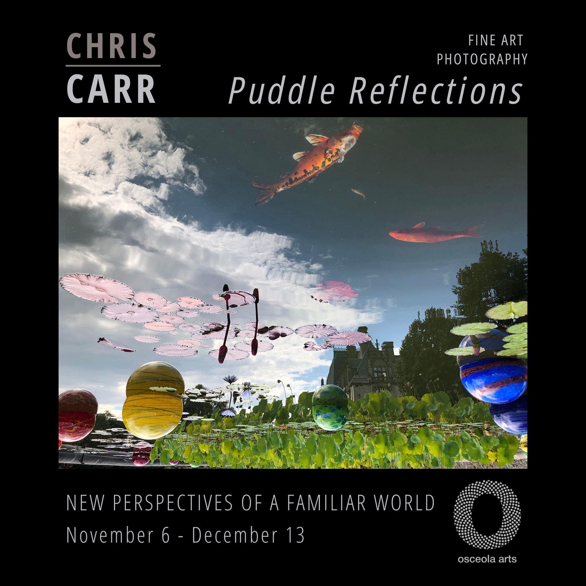 Puddle Reflections: Fine Art Photography by Chris Carr