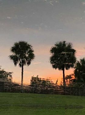 Sunset Under the Palms